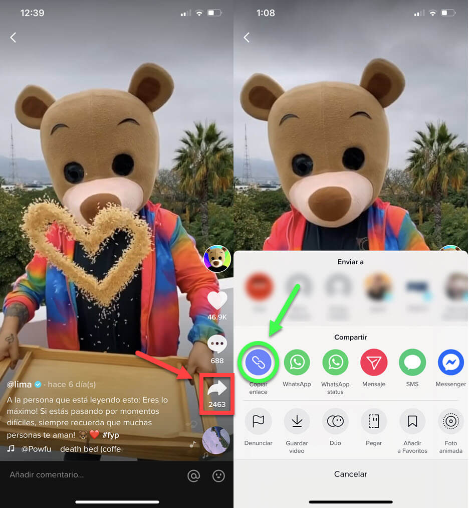 Come scaricare video da TikTok senza filigrana